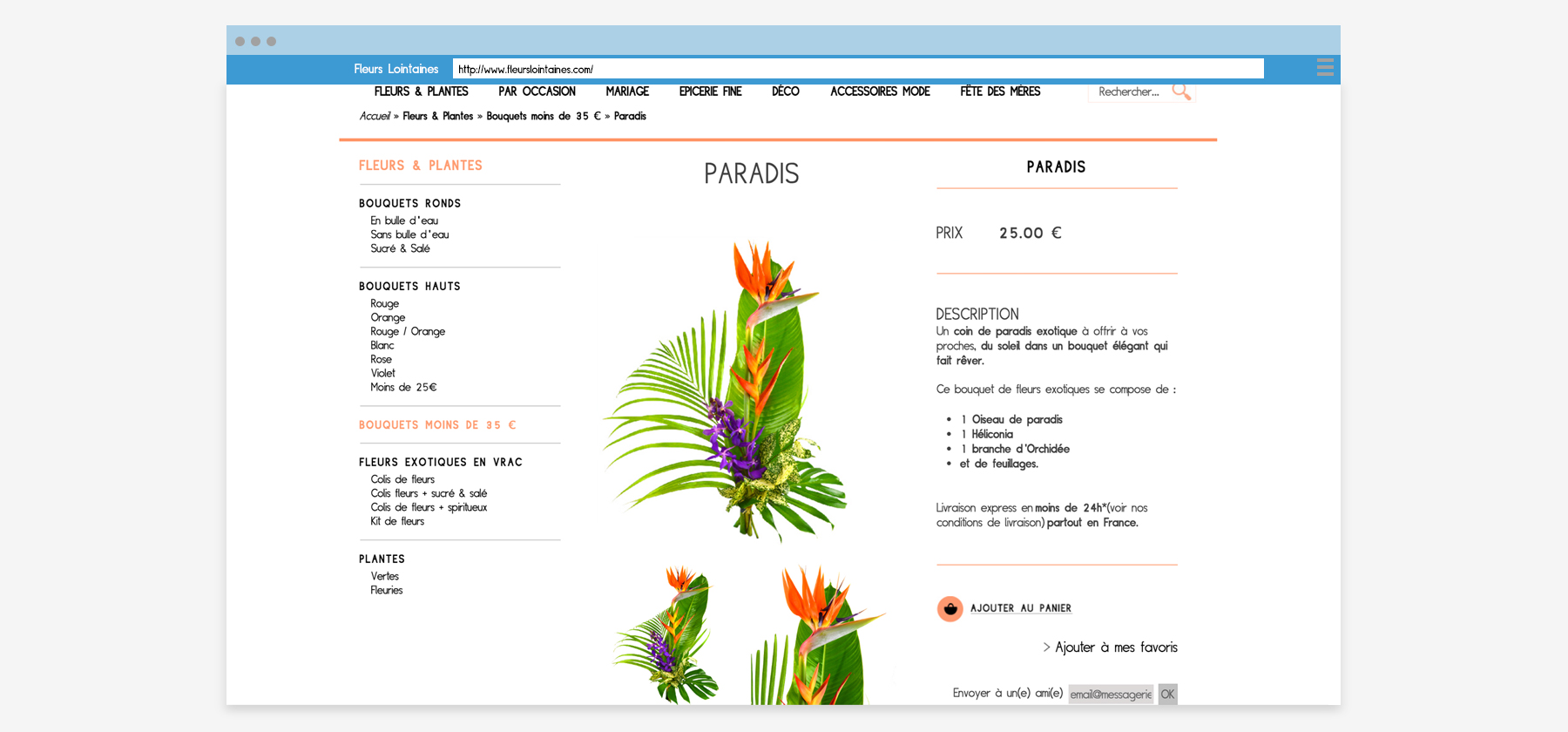 fleurs-lointaines-page-2