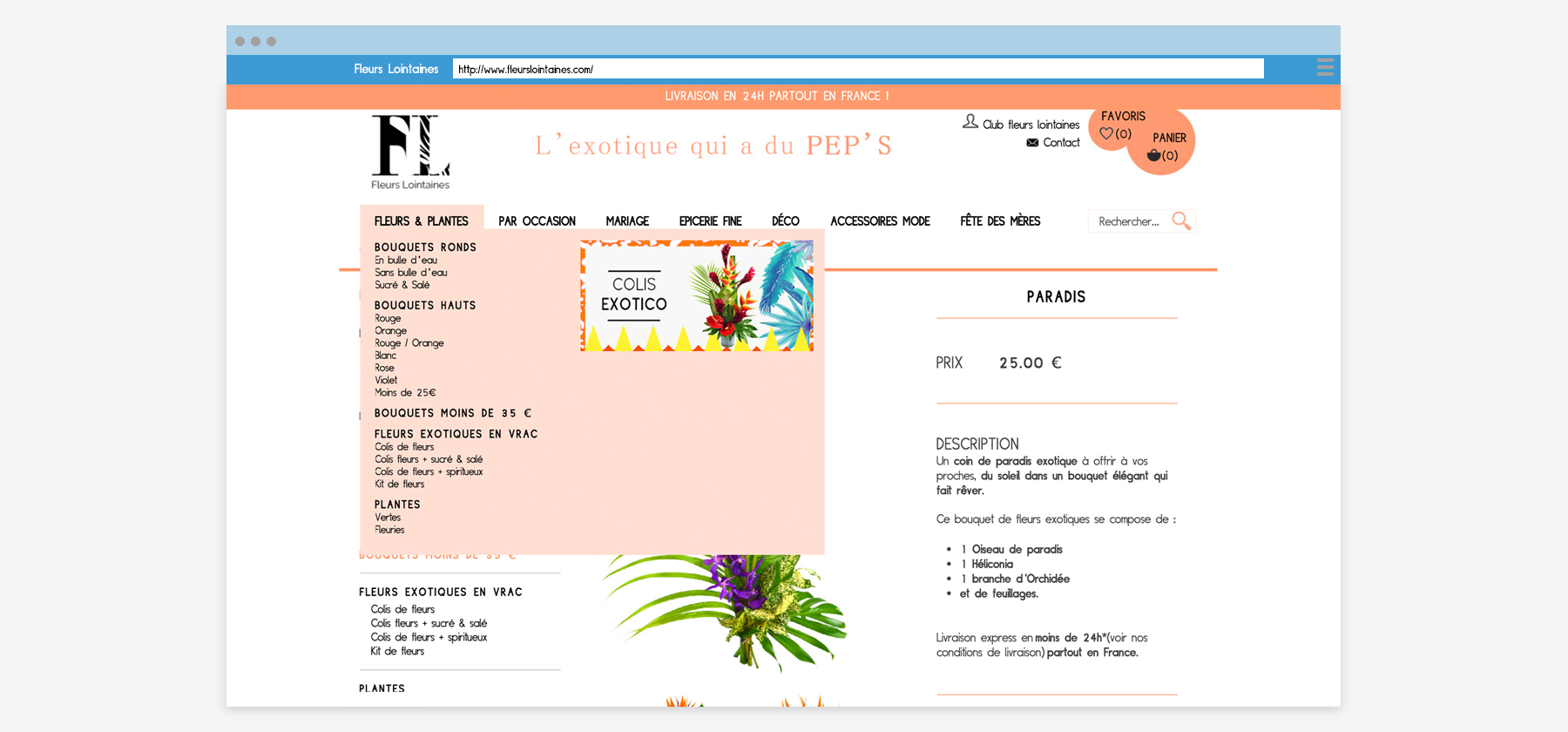 fleurs-lointaines-page-3